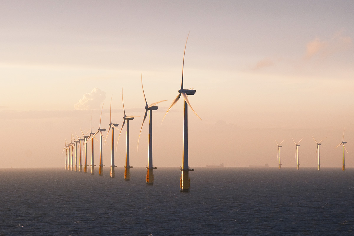 Leading NGOs, grid developers and the wind industry start new partnership to ensure the sustainable development of offshore wind