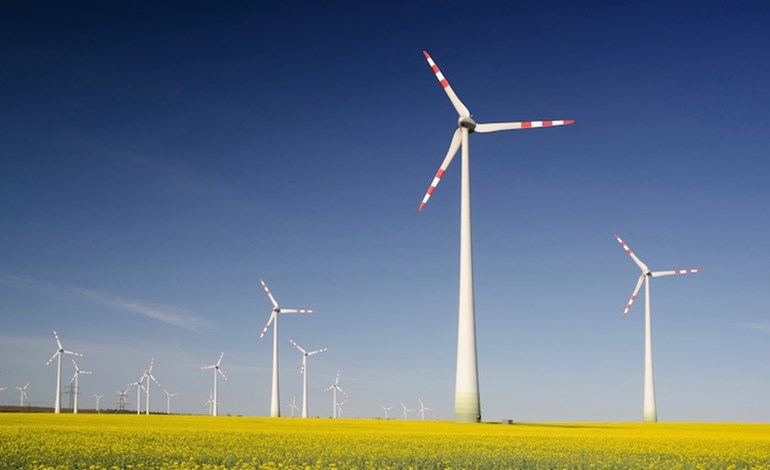 European renewables auctions 'set for record-breaking year'