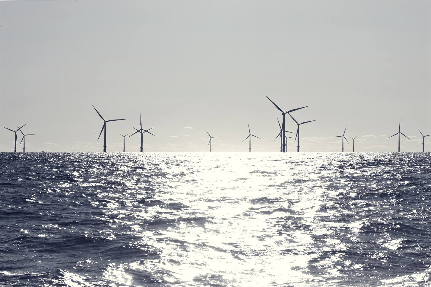 Wind Turbines at Sea Reach 5 Per Cent of Total Wind Energy Capacity