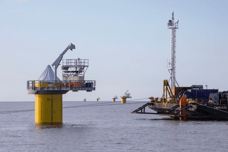 All Windpark Fryslân Array Cables In Place